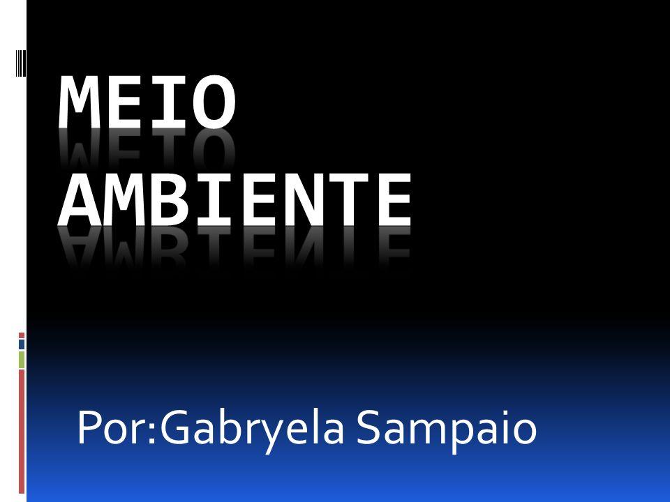 Meio ambiente Por:Gabryela Sampaio