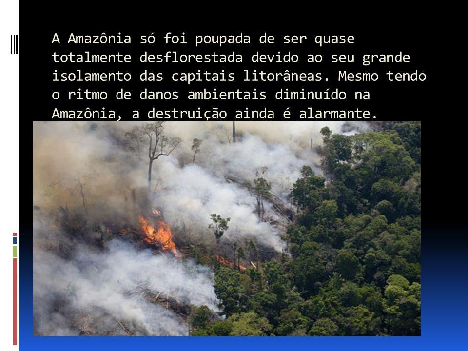 A Amazônia só foi poupada de ser quase totalmente desflorestada devido ao seu grande isolamento das capitais litorâneas.