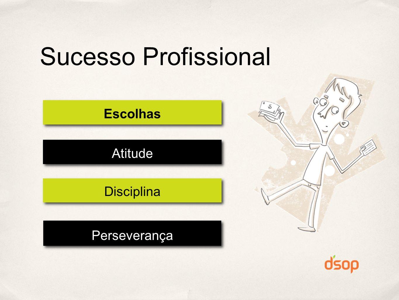 Sucesso Profissional Escolhas Atitude Disciplina Perseverança