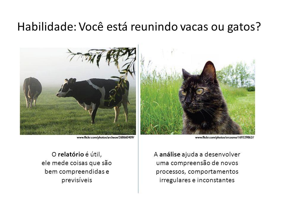 Habilidade: Você está reunindo vacas ou gatos