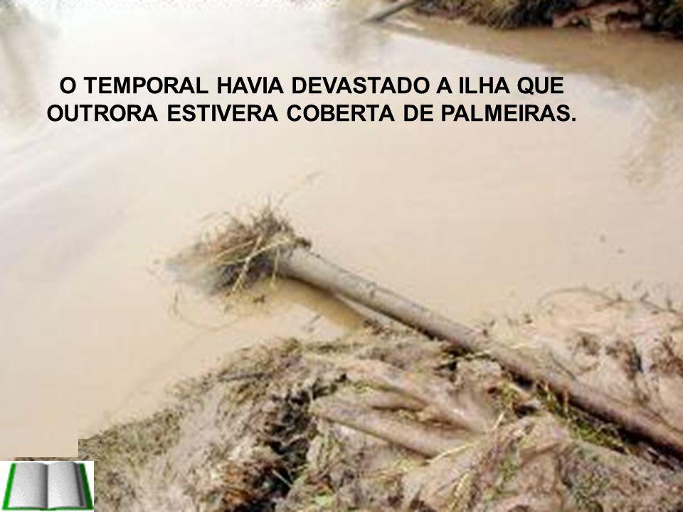 O TEMPORAL HAVIA DEVASTADO A ILHA QUE OUTRORA ESTIVERA COBERTA DE PALMEIRAS.