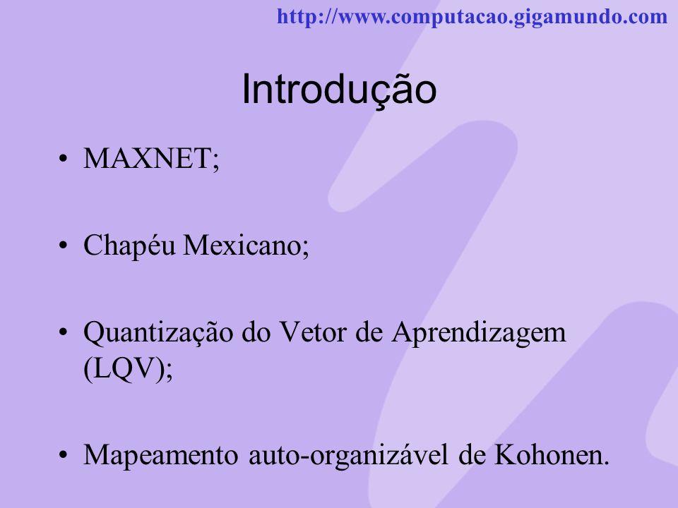 Introdução MAXNET; Chapéu Mexicano;