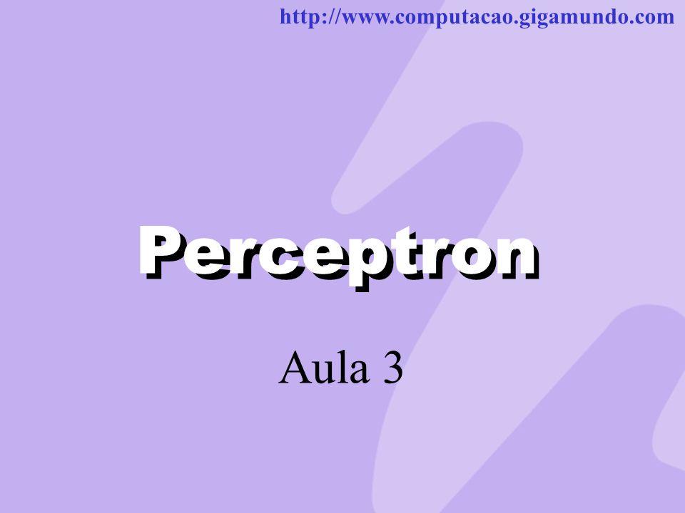 Perceptron Perceptron