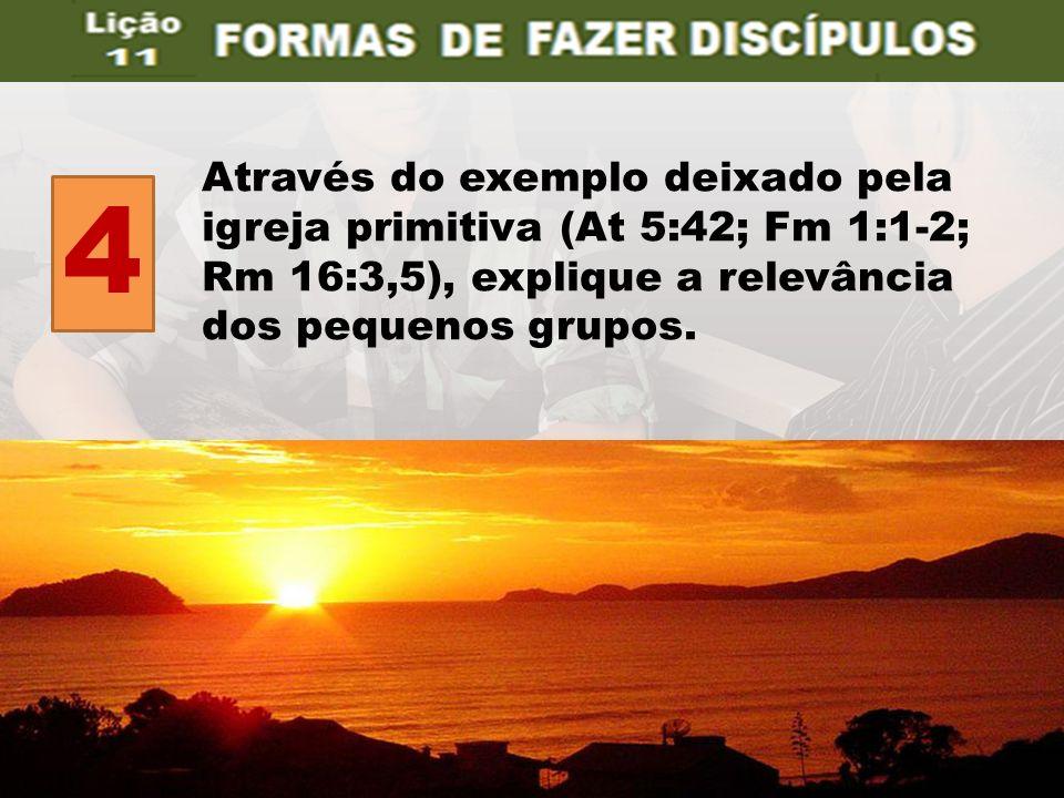 4 Através do exemplo deixado pela igreja primitiva (At 5:42; Fm 1:1-2;
