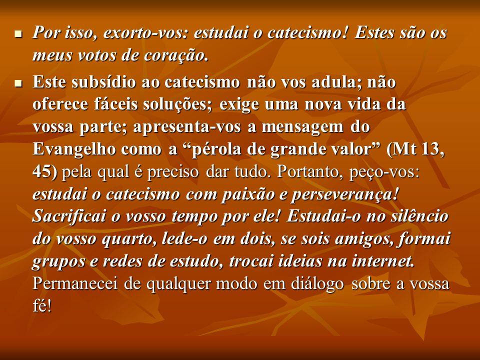 Por isso, exorto-vos: estudai o catecismo