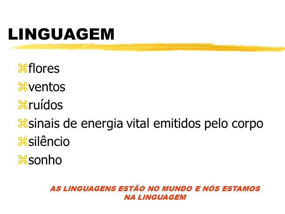 AS LINGUAGENS ESTÃO NO MUNDO E NÓS ESTAMOS NA LINGUAGEM