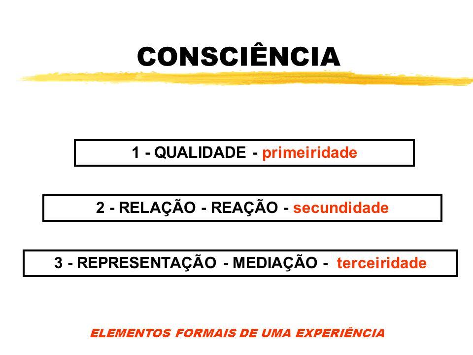 CONSCIÊNCIA 1 - QUALIDADE - primeiridade