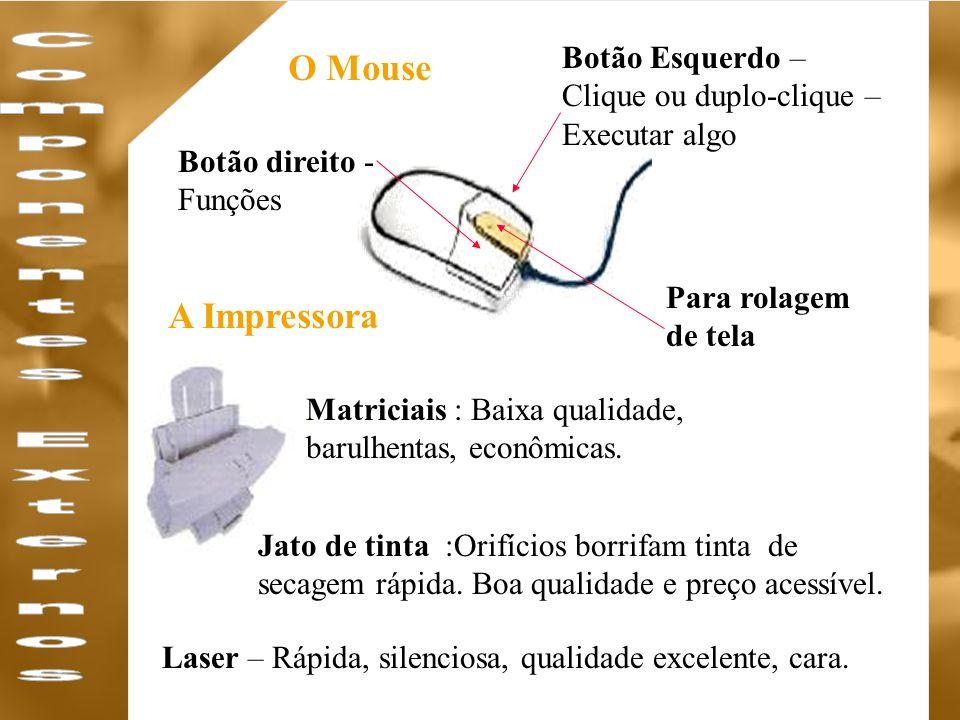 Componentes Externos O Mouse A Impressora