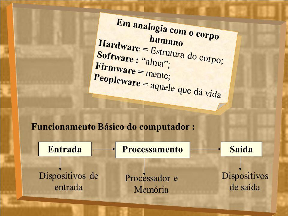 Em analogia com o corpo humano