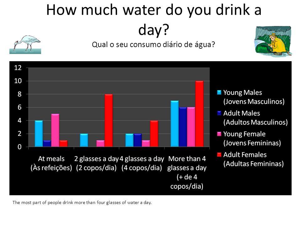 How much water do you drink a day Qual o seu consumo diário de água