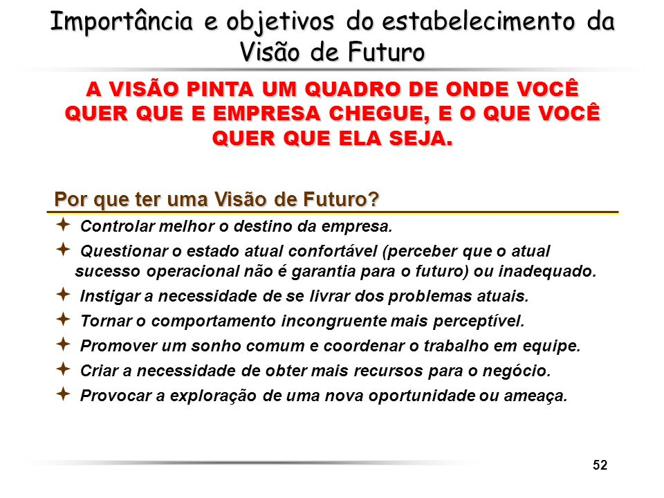 Importância e objetivos do estabelecimento da Visão de Futuro