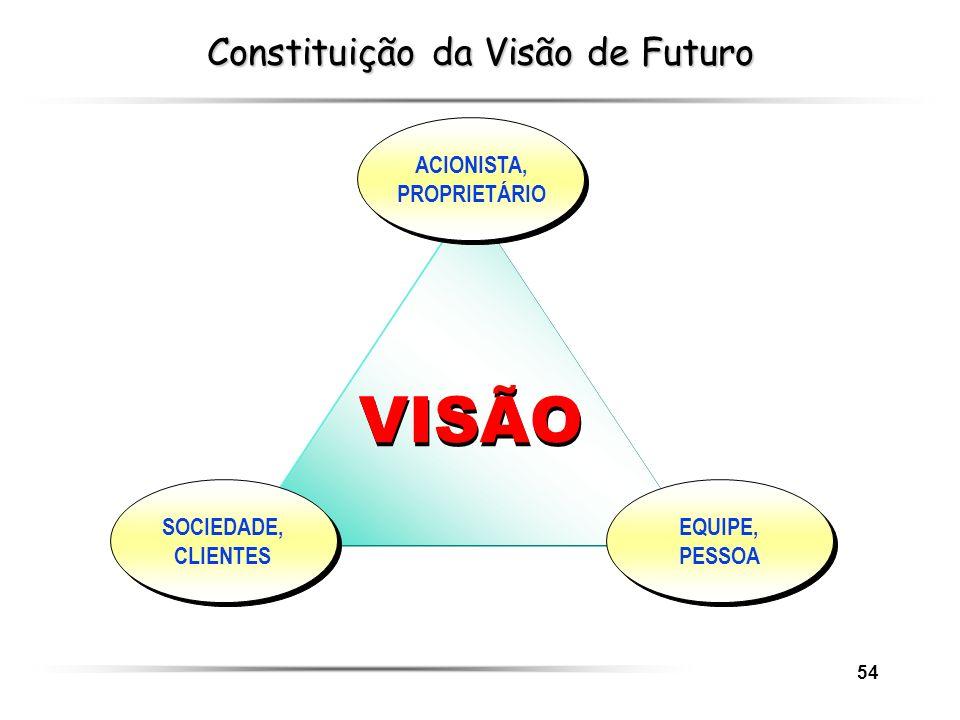 Constituição da Visão de Futuro