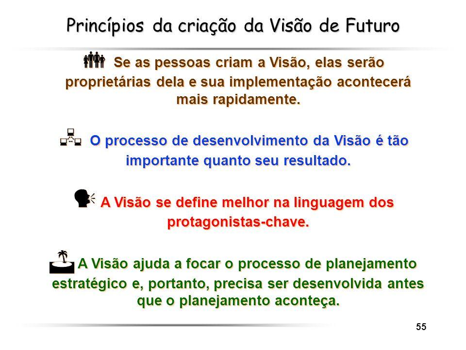 Princípios da criação da Visão de Futuro