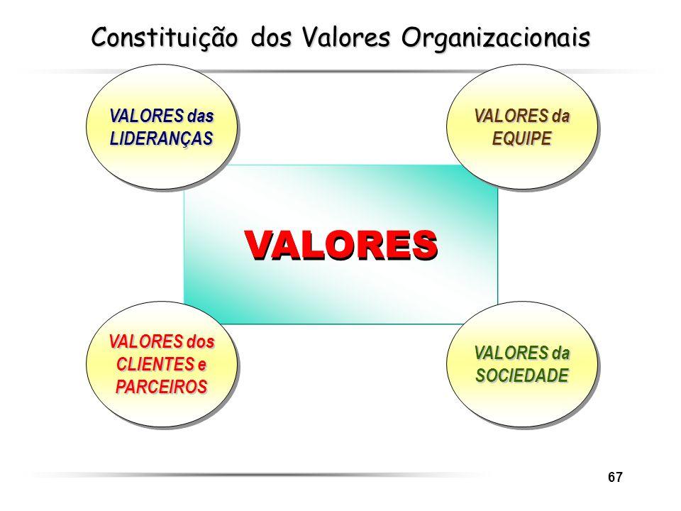 Constituição dos Valores Organizacionais