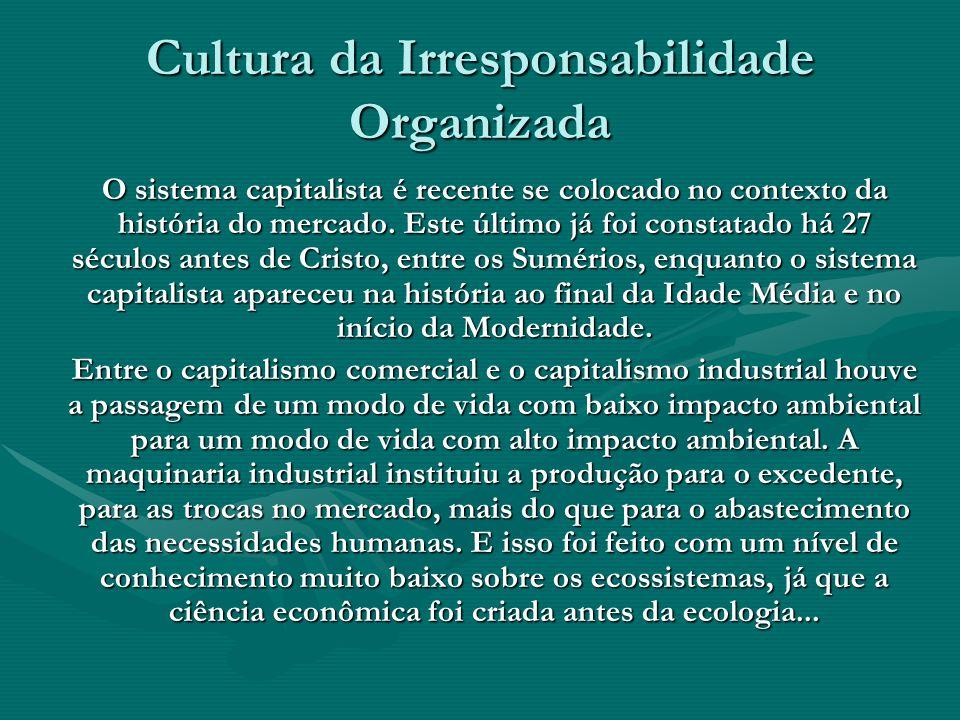 Cultura da Irresponsabilidade Organizada