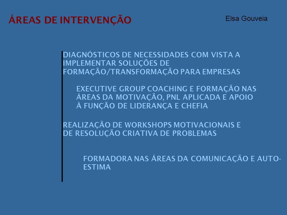 ÁREAS DE INTERVENÇÃO Elsa Gouveia