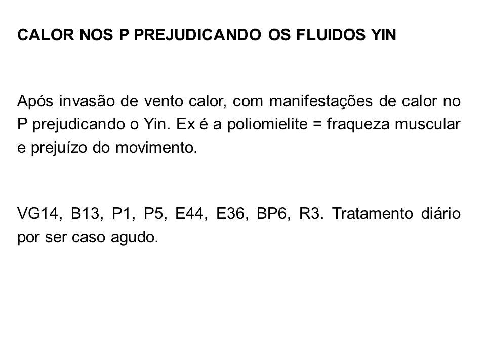 CALOR NOS P PREJUDICANDO OS FLUIDOS YIN