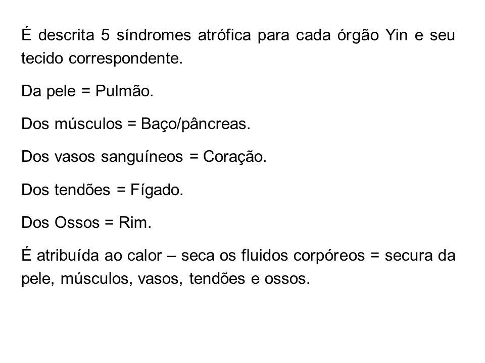 É descrita 5 síndromes atrófica para cada órgão Yin e seu tecido correspondente.
