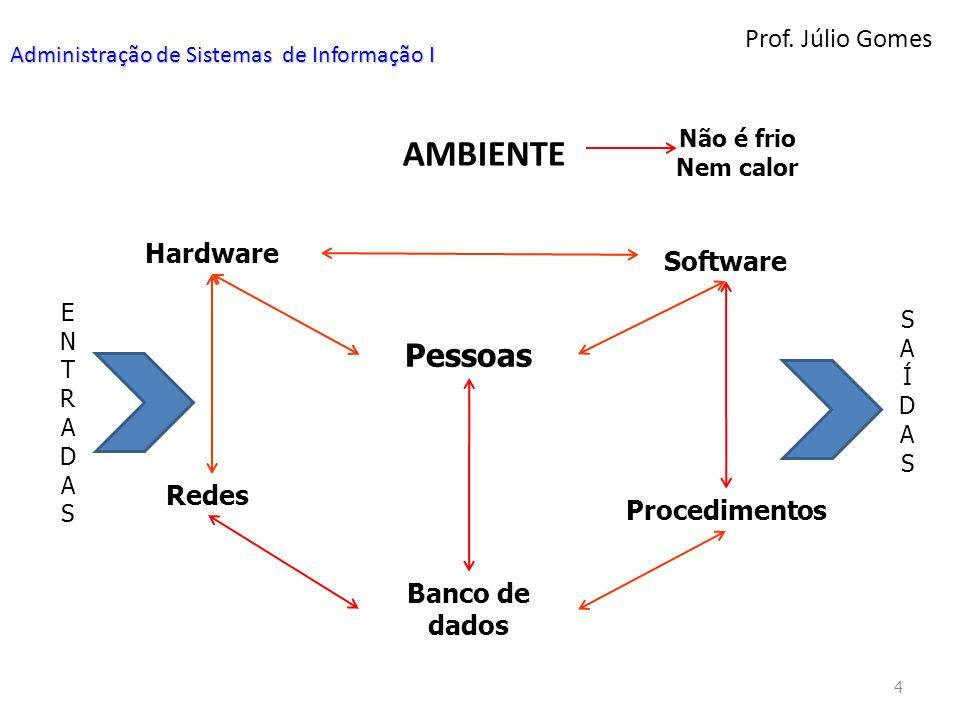 AMBIENTE Pessoas Prof. Júlio Gomes Hardware Software Redes