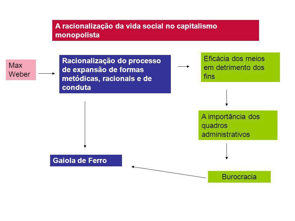 A racionalização da vida social no capitalismo monopolista