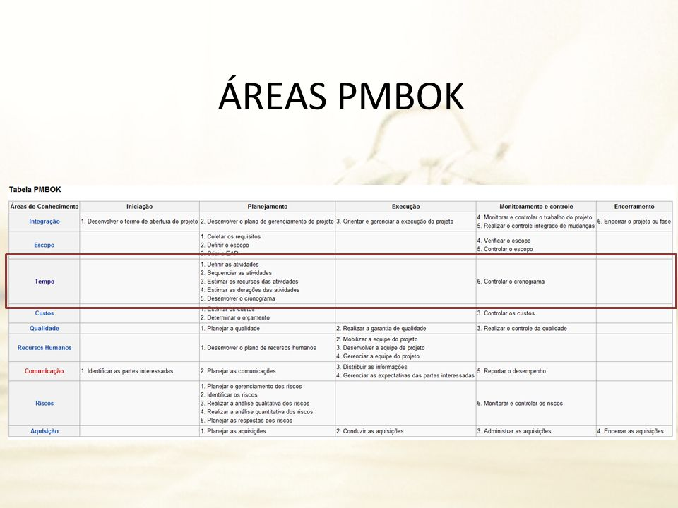 ÁREAS PMBOK