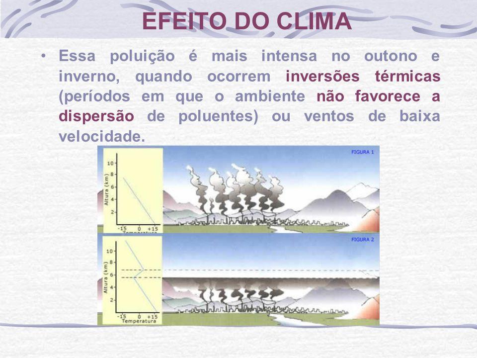 EFEITO DO CLIMA