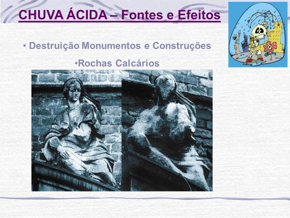 CHUVA ÁCIDA – Fontes e Efeitos Destruição Monumentos e Construções