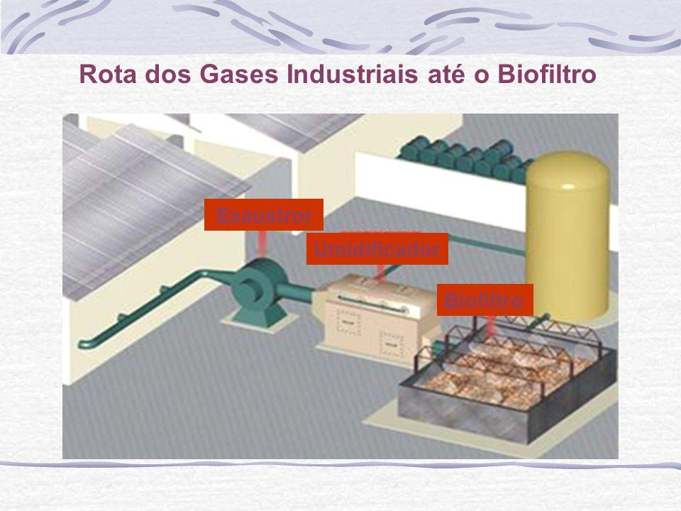 Rota dos Gases Industriais até o Biofiltro