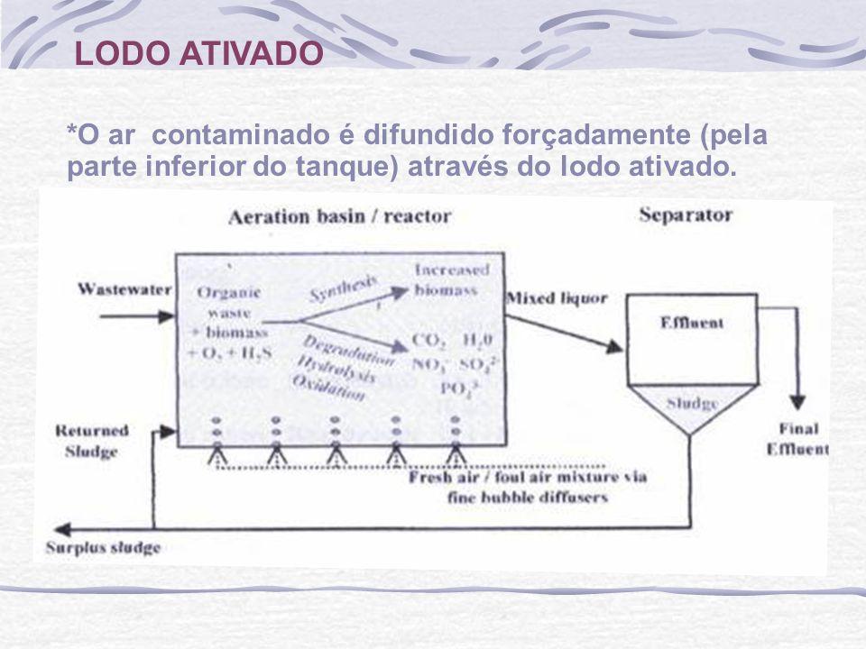 LODO ATIVADO *O ar contaminado é difundido forçadamente (pela parte inferior do tanque) através do lodo ativado.