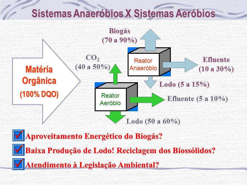 Sistemas Anaeróbios X Sistemas Aeróbios
