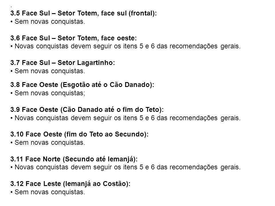 . 3.5 Face Sul – Setor Totem, face sul (frontal): • Sem novas conquistas. 3.6 Face Sul – Setor Totem, face oeste: