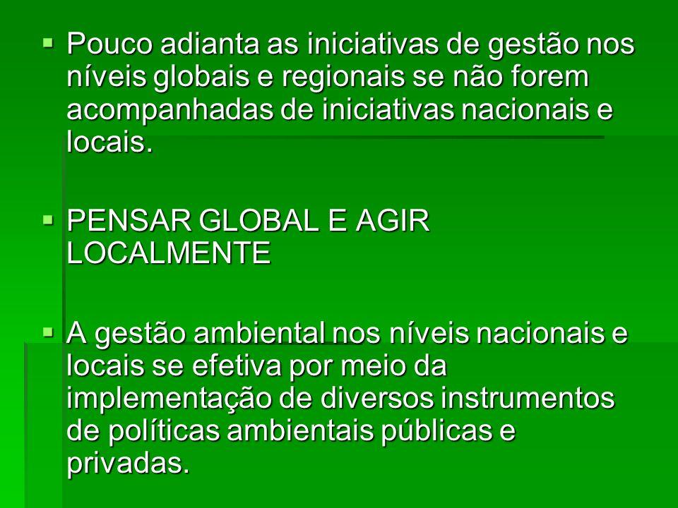 Pouco adianta as iniciativas de gestão nos níveis globais e regionais se não forem acompanhadas de iniciativas nacionais e locais.