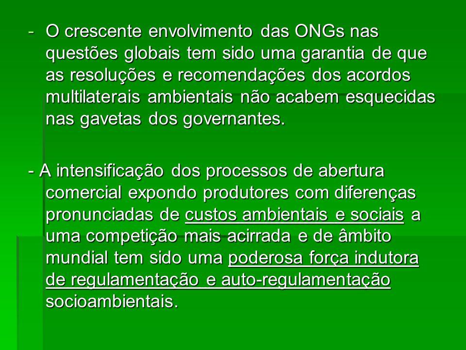 O crescente envolvimento das ONGs nas questões globais tem sido uma garantia de que as resoluções e recomendações dos acordos multilaterais ambientais não acabem esquecidas nas gavetas dos governantes.