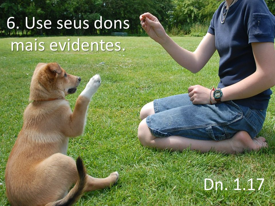 6. Use seus dons mais evidentes.