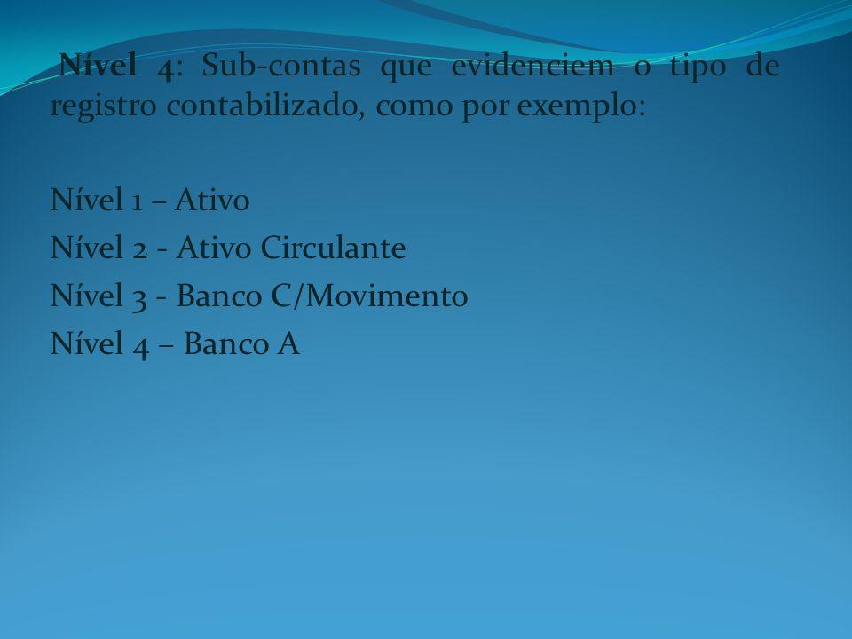 Nível 4: Sub-contas que evidenciem o tipo de registro contabilizado, como por exemplo:
