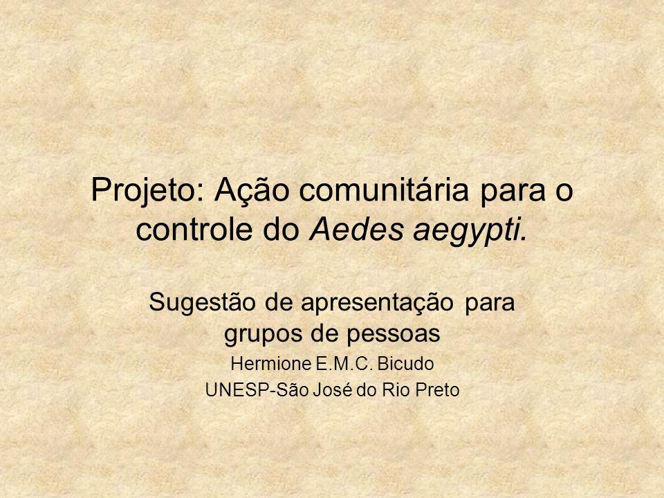 Projeto: Ação comunitária para o controle do Aedes aegypti.
