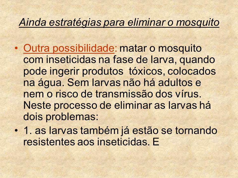 Ainda estratégias para eliminar o mosquito
