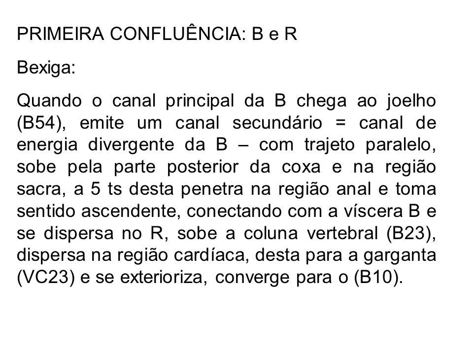 PRIMEIRA CONFLUÊNCIA: B e R