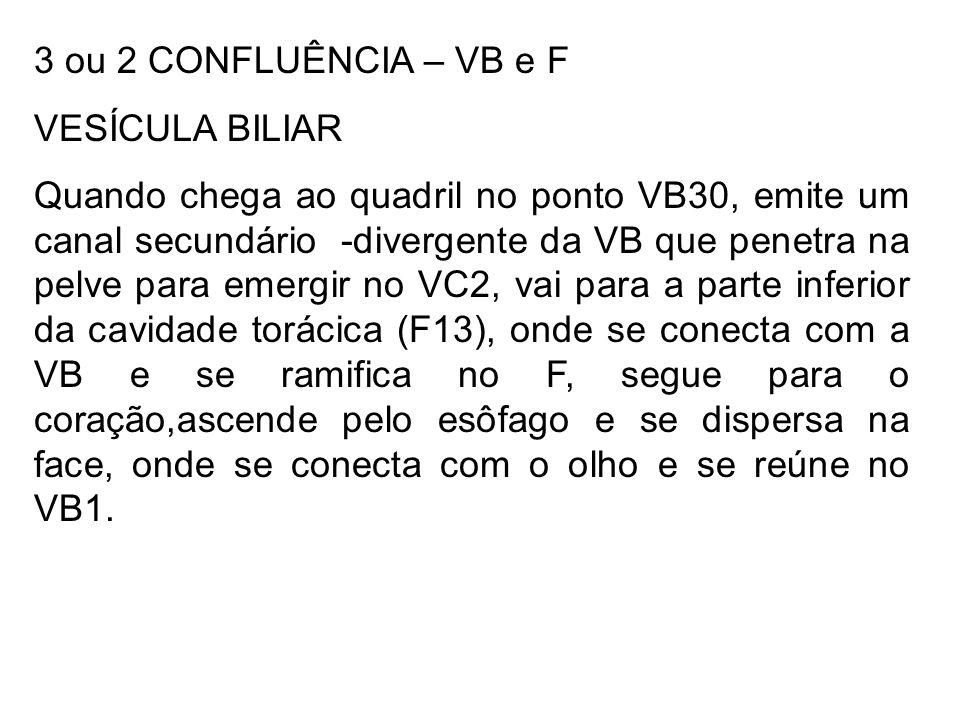 3 ou 2 CONFLUÊNCIA – VB e F VESÍCULA BILIAR.