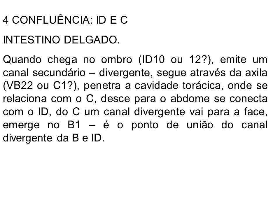 4 CONFLUÊNCIA: ID E C INTESTINO DELGADO.