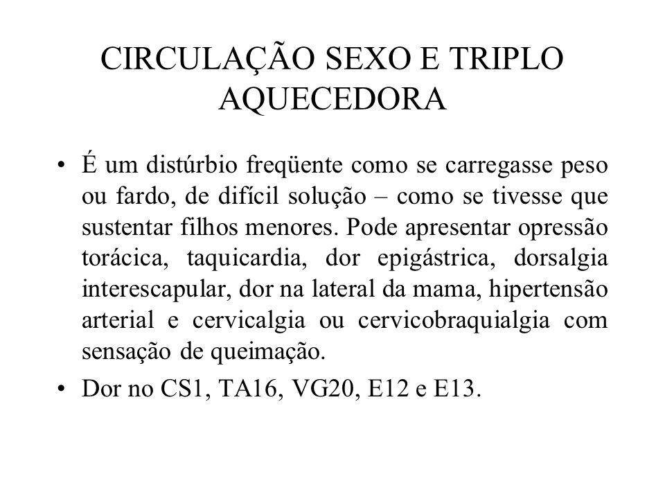 CIRCULAÇÃO SEXO E TRIPLO AQUECEDORA