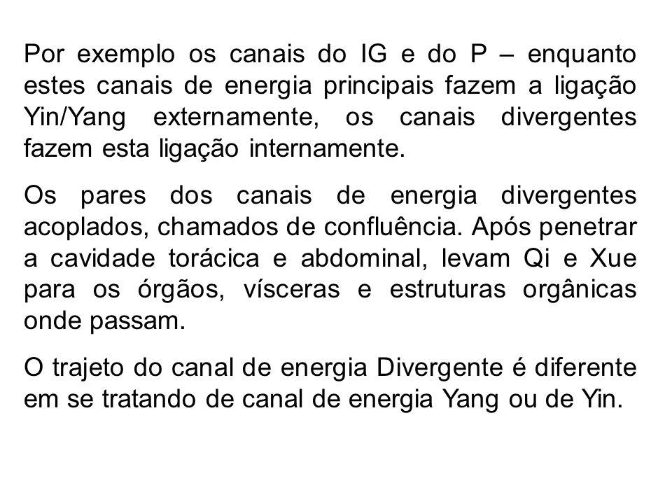 Por exemplo os canais do IG e do P – enquanto estes canais de energia principais fazem a ligação Yin/Yang externamente, os canais divergentes fazem esta ligação internamente.