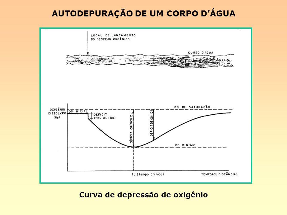 AUTODEPURAÇÃO DE UM CORPO D'ÁGUA Curva de depressão de oxigênio