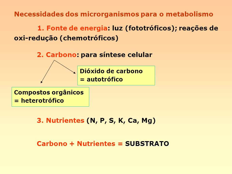 Necessidades dos microrganismos para o metabolismo