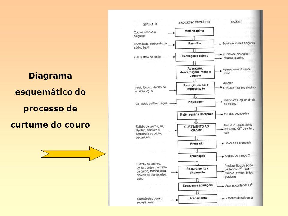 Diagrama esquemático do processo de curtume do couro