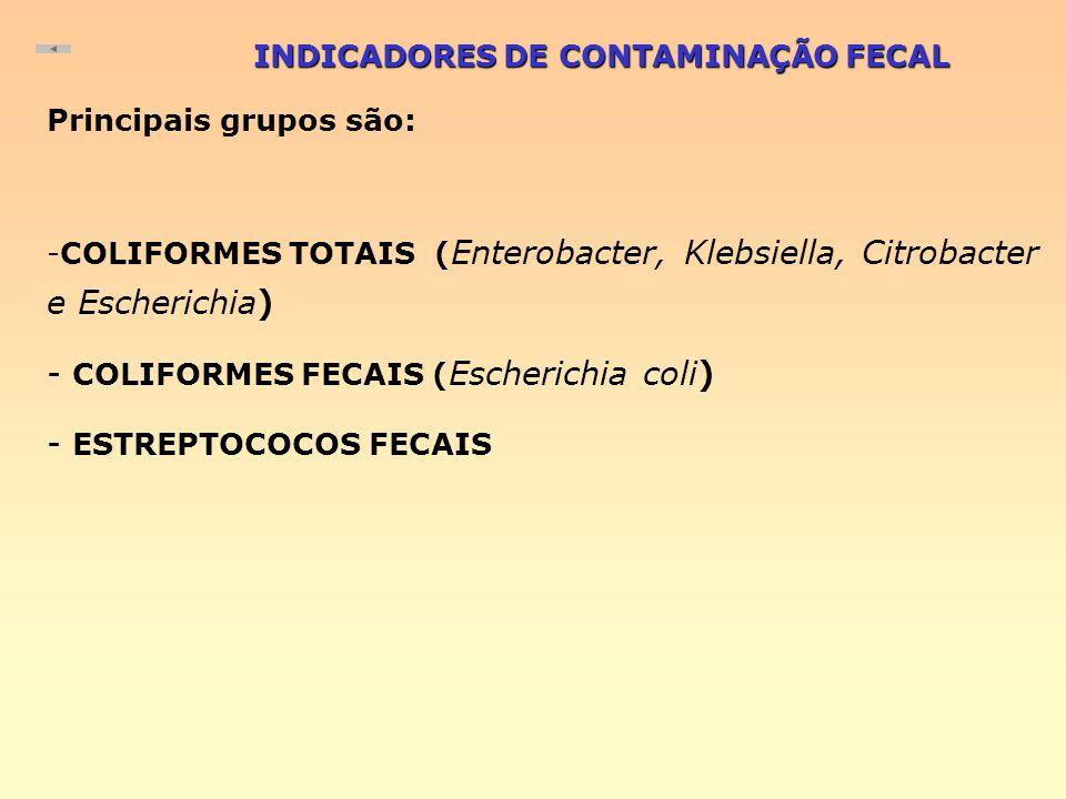 INDICADORES DE CONTAMINAÇÃO FECAL