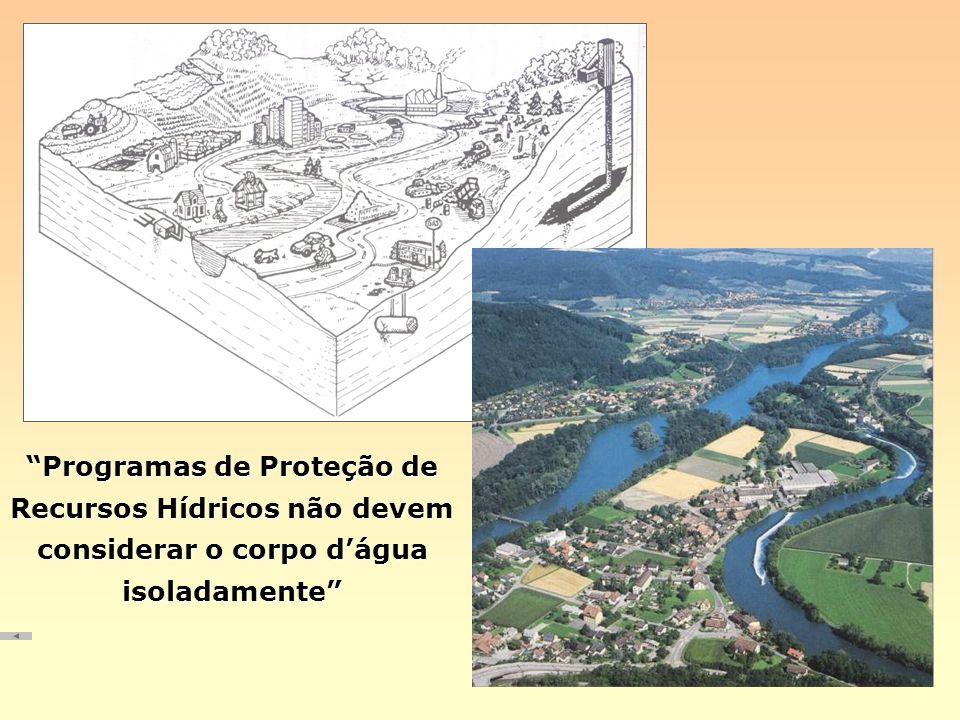 Programas de Proteção de Recursos Hídricos não devem considerar o corpo d'água isoladamente