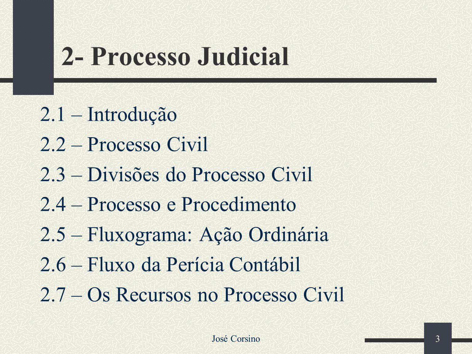 2- Processo Judicial 2.1 – Introdução 2.2 – Processo Civil
