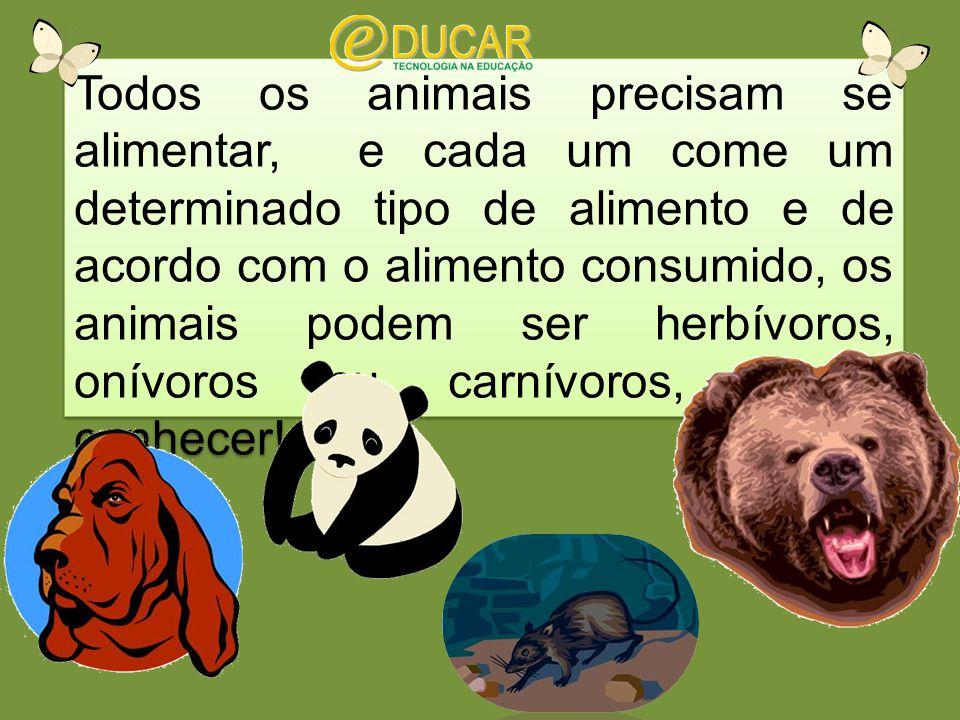 Todos os animais precisam se alimentar, e cada um come um determinado tipo de alimento e de acordo com o alimento consumido, os animais podem ser herbívoros, onívoros ou carnívoros, vamos conhecer!