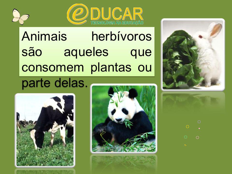 Animais herbívoros são aqueles que consomem plantas ou parte delas.